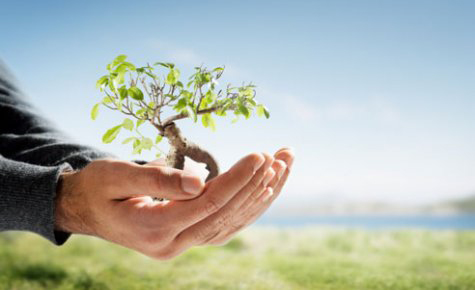 Environmental Awareness - ECE PLASTIC